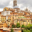 Siena — Stock Photo #57913521
