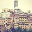 Siena — Stock Photo #59096909