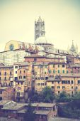 Siena — Stock Photo