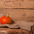 Autumn pumpkin — Stock Photo #55243849