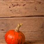 Autumn pumpkin — Stock Photo #55243867