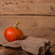 Autumn pumpkin — Stock Photo #55628947