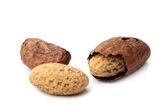 Kola nuts — Stock Photo
