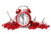 Alarm clock and red berries of viburnum — Stockfoto