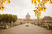 """""""Le pont des Arts"""" with the French Institute — Stock Photo"""