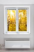 Janela de outono — Fotografia Stock