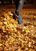 Pies en hojas — Foto de Stock