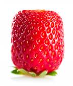 Square   strawberry — Stock Photo