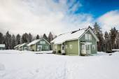 Green houses in snow — Stockfoto