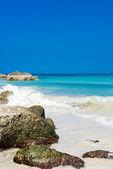 Tropical stone beach — 图库照片