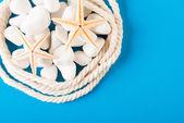 Rope and exotic starfish — Stock Photo