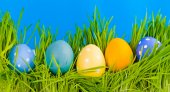 Easter eggs in grass — Stock Photo