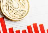 One pound coin — Stock Photo