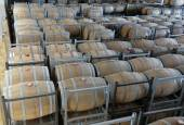 Wine aging in barrels — Stock Photo