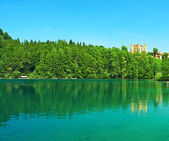 Alpsee lake at Hohenschwangau near Munich in Bavaria — Stock Photo