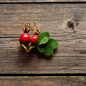 Rose hip over wooden background — Stock Photo