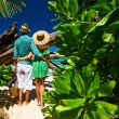 Couple on beach at Seychelles — Foto de Stock   #70284537