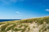 Landscape with sand dunes — Stock Photo