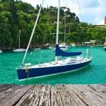 Yachts at Portofino bay — Stock Photo #74499751