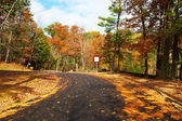 Autumn scene with road in forest — Stock Photo