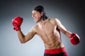 Martial arts fighter at the training — Stock Photo