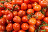 Market stall with lots of tomatoes — Stock Photo