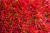 Lots of red peppers arranged at the market — Stok fotoğraf