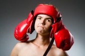 Funny boxer against dark background — Stok fotoğraf