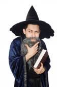Funny wise wizard isolated on the white — Stock Photo