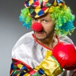 Funny clown with boxing gloves — Stock Photo #57244041