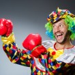 Funny clown with boxing gloves — Stock Photo #57369887