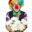 Clown isolated on the white background — Stock Photo #57371183