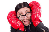 Businessman boxer isolated on the white — Stock Photo