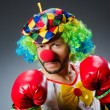 Funny clown with boxing gloves — Stock Photo #57945045