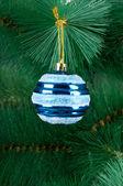 Decorazione di Natale su abete — Foto Stock