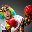 Funny clown with boxing gloves — Stock Photo #58255065