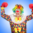 Clown with boxing gloves — Stock Photo #58272407