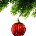 Christmas decoration isolated on the white — Stock Photo #59179909