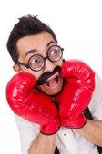 Engraçado boxer isolado no fundo branco — Foto Stock