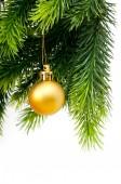 Aislado en el blanco de la decoración de navidad — Foto de Stock