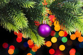 Decoration on the fir tree — Stock Photo