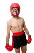 Funny boxer isolated on the white — Photo