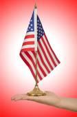 Hand holding flag — Stock Photo