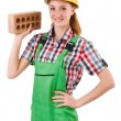 Female handyman in overalls — Stock Photo #69153491