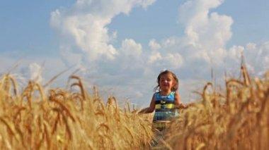 Girl running through    field — Stock Video