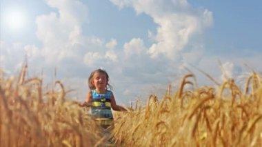 Garota correndo através de um campo de trigo — Vídeo stock