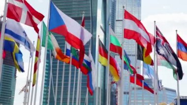 National flags of different country — Stock Video