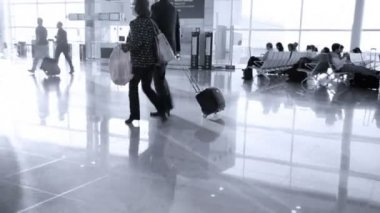 People with luggage in Airport — Stock Video