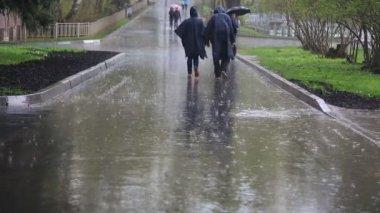People walking in the rain — Stock Video