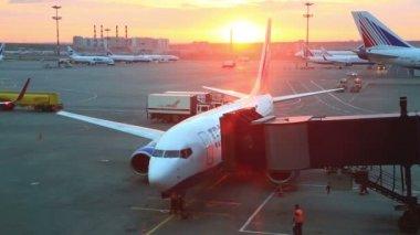 Preflight preparation of plane at airport Vnukovo — Stock Video